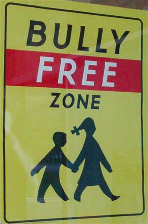 District Anti-Bullying Policy PDF